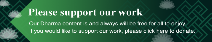 Please support our work