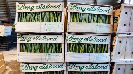Asparagus boxes packed and ready for collection