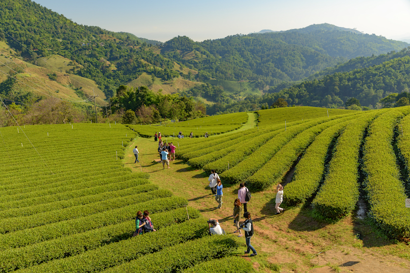 12 top tourist attractions in Chiang Rai (with map and photos) - Touropia